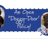 """Pets in the Workplace – An Open """"Doggy-Door"""" Policy!"""