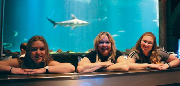 Sharks Underwater Grill - Orlando, Florida