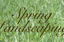 Spring Landscaping in Omaha NE Header