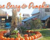 Bellevue Berry Farm & Pumpkin Ranch