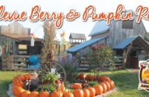Bellevue Berry Farm-Client Spotlight