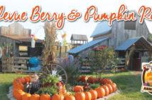 Bellevue Berry Farm-Client Spotlight