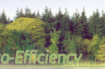 Eco-Efficiency - Header