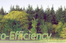Eco-Efficiency - Header