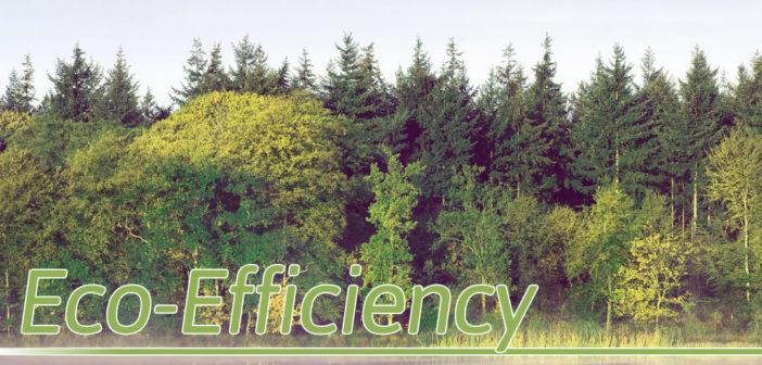 Eco-Efficiency in Omaha, NE