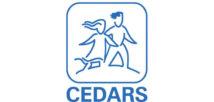 CEDARS-Supporting-Non-Profits