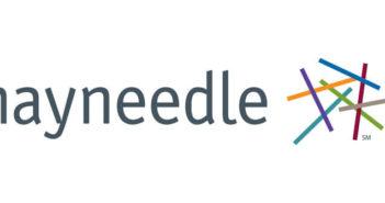 hayneedle-logo
