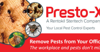 Remove Pests from Your Office – The Workplace and Pests Don't Mix!