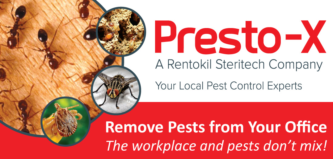Remove Pests from Your Office - The Workplace and Pests Don