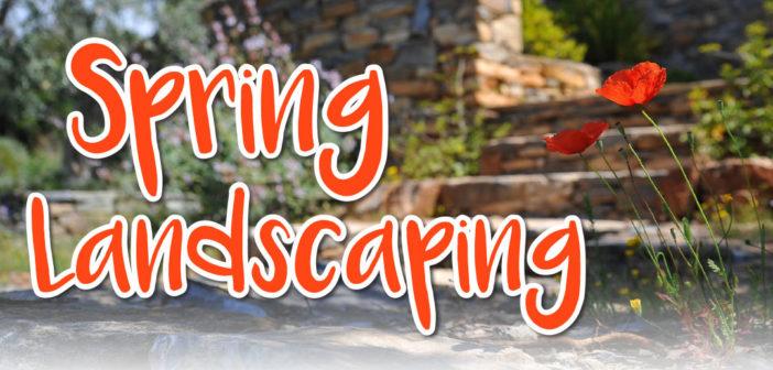 Spring Landscaping in Omaha, NE – 2020